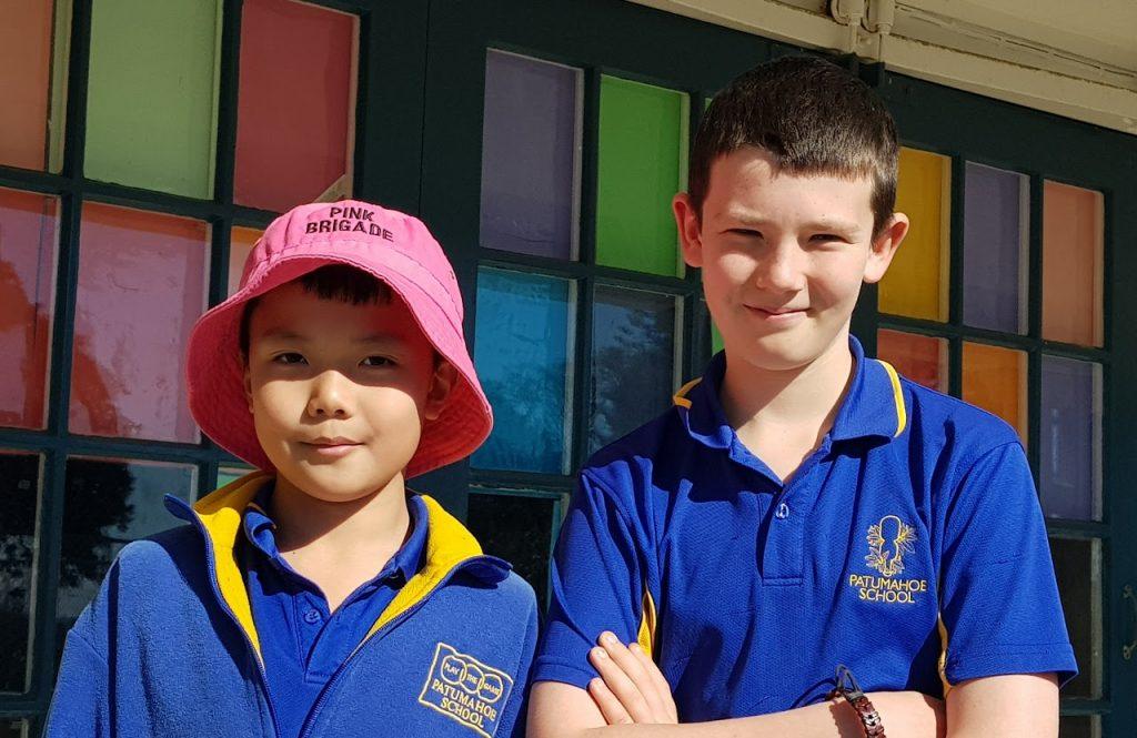 Pink Brigade, Patumahoe School