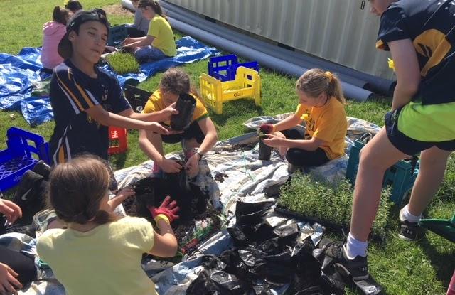 Enviro Group, Patumahoe School